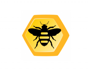 Buzy Bee Software Services