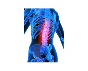 South Lakes Osteopathy