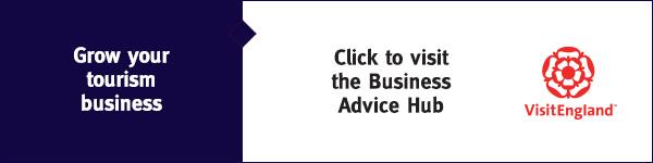 Business Advice Hub
